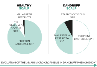 Dezechilibrul microbiomului